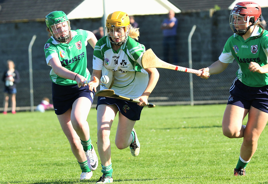 Latest round of Fixtures confirmed in Senior Camogie Championship